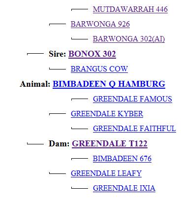 hamburg pedigree