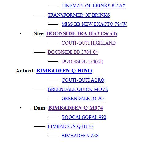 hino pedigree